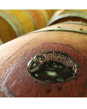 toping - מילוי החבית ביין