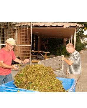 Kfar Tikva Members working