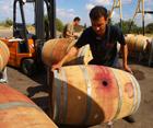 יישון יין בחבית עץ